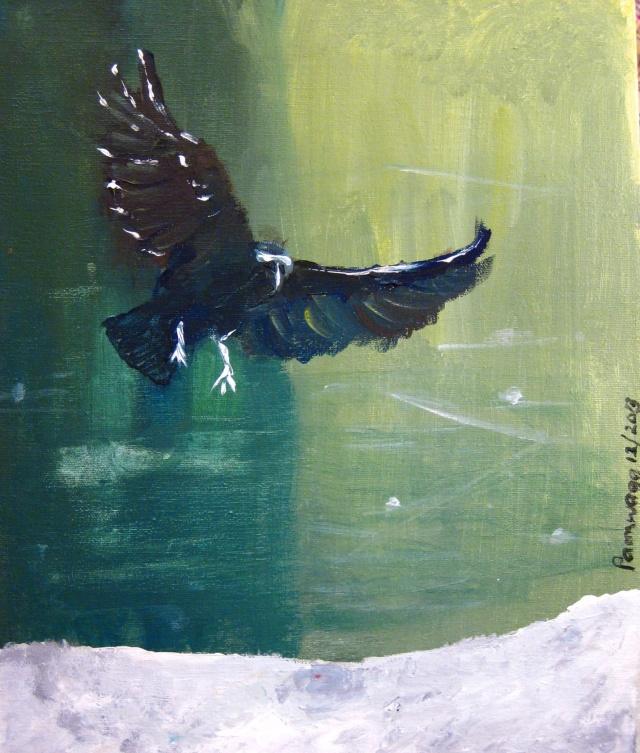 Blackbird landing on Snow