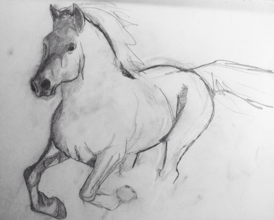 my first drawing of a horse